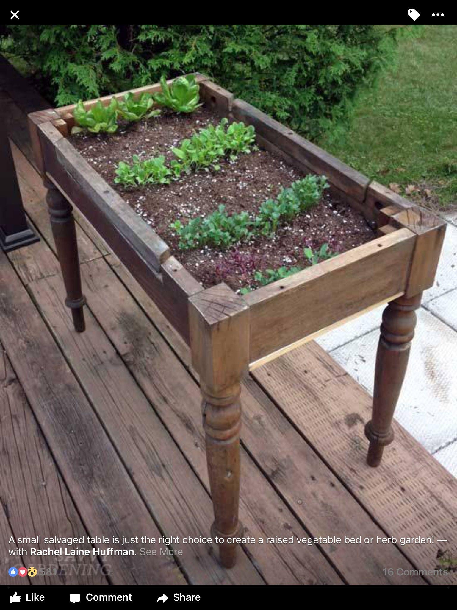 Pin Von Maria Brauer Auf Garten Garten Garten Ideen Und Garten Deko