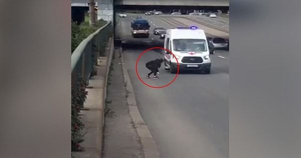 VIDEO: Girl Risks Own Life To Rescue Kitten On Highway – This Clip WILL LEAVE YOU BREATHLESS!