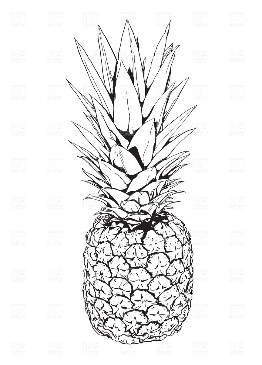 Pineapple Clip Art Black and White | idee motifs terre cuites ... for Clipart Pineapple Black And White  76uhy
