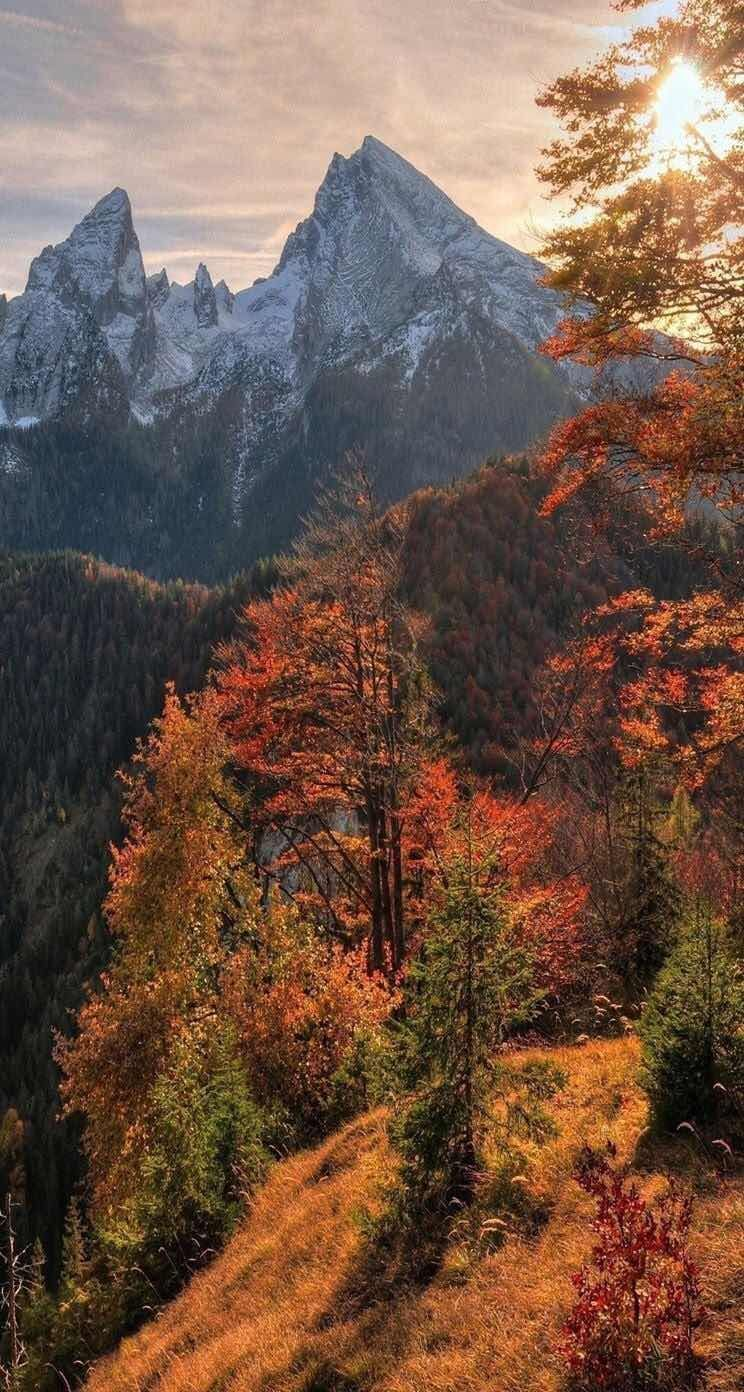 16 Adventurous Forest Mountain Iphone 7 Wallpapers Preppy Wallpapers Landscape Wallpaper Beautiful Nature Nature