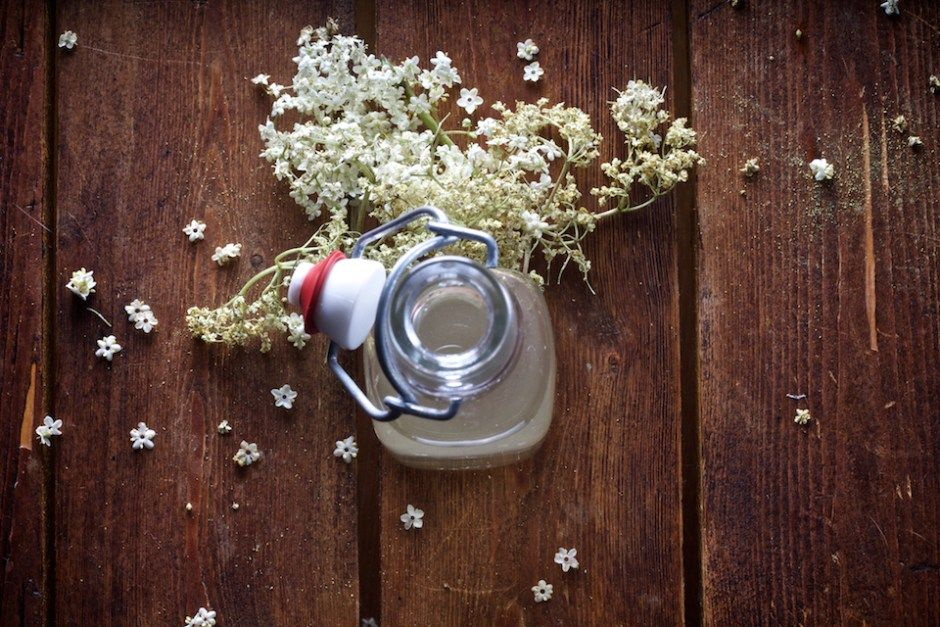 Holunderblütensirup (vegan) | Foodblog Ihana