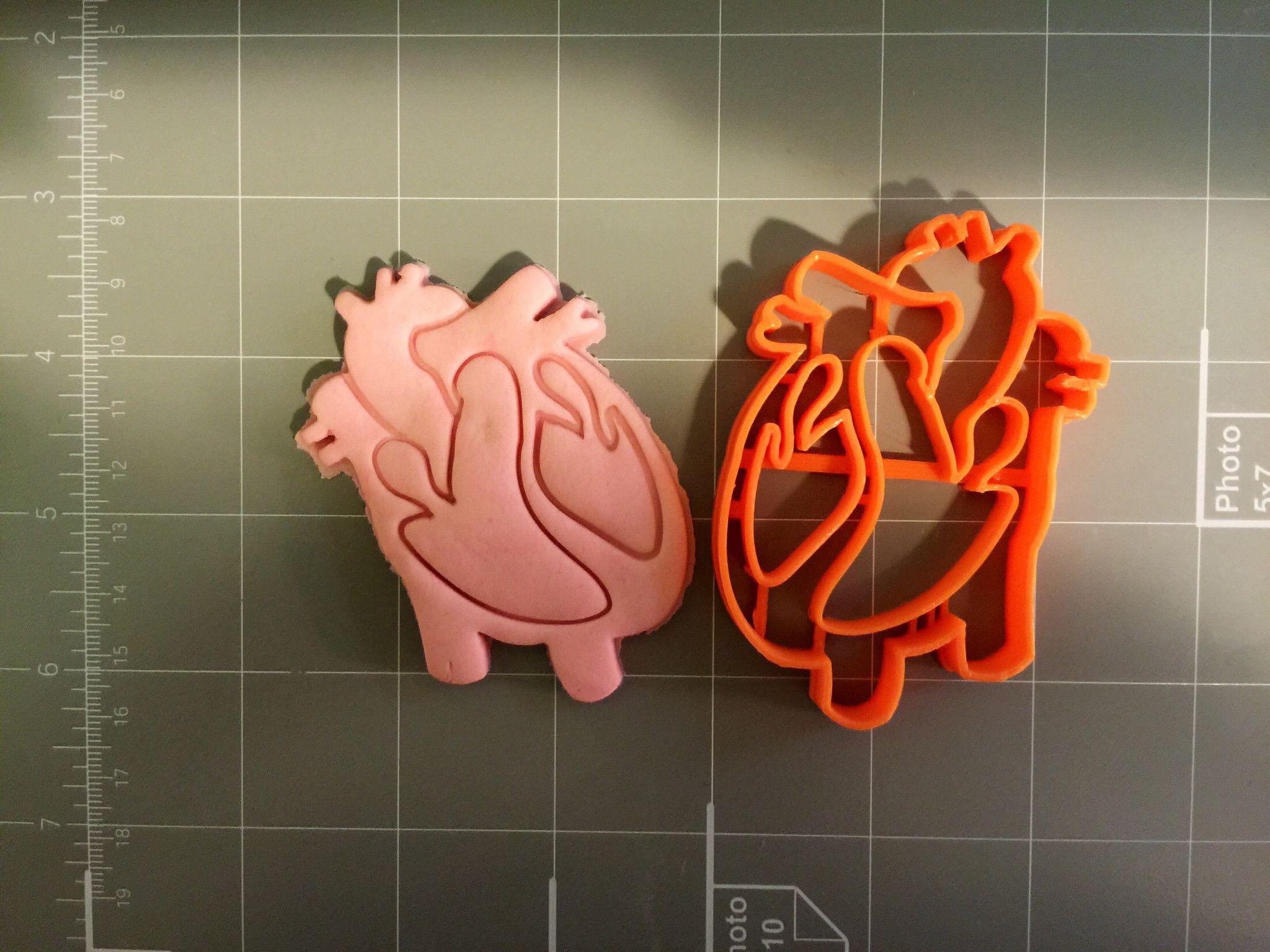 Heart Anatomy Cookie Cutter   Medicina, Anatomía y Cardiología
