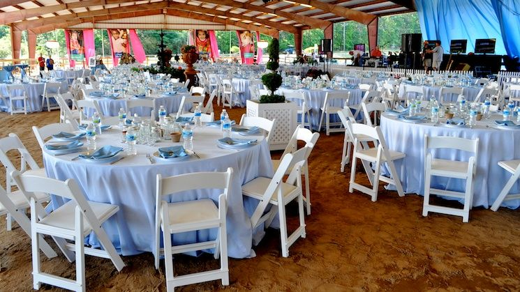 Sean O'Keefe Events, Down Home Derby benefitting the Child Development Association in Roswell, GA