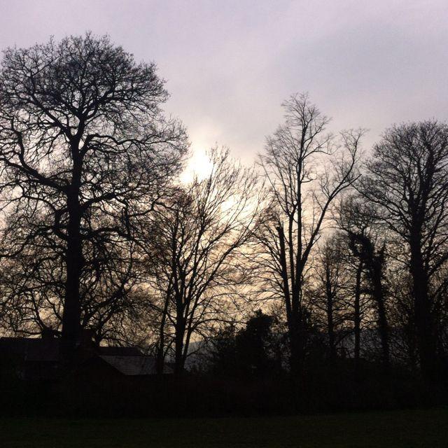 The sky on my evening walk