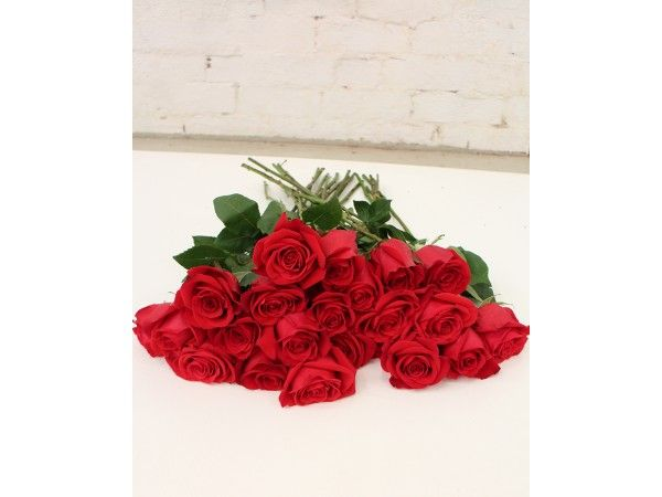 Say I love you with these beautiful red roses. They are long stemmed  blooms from Columbia #redroses #sydneyflowerdelivery