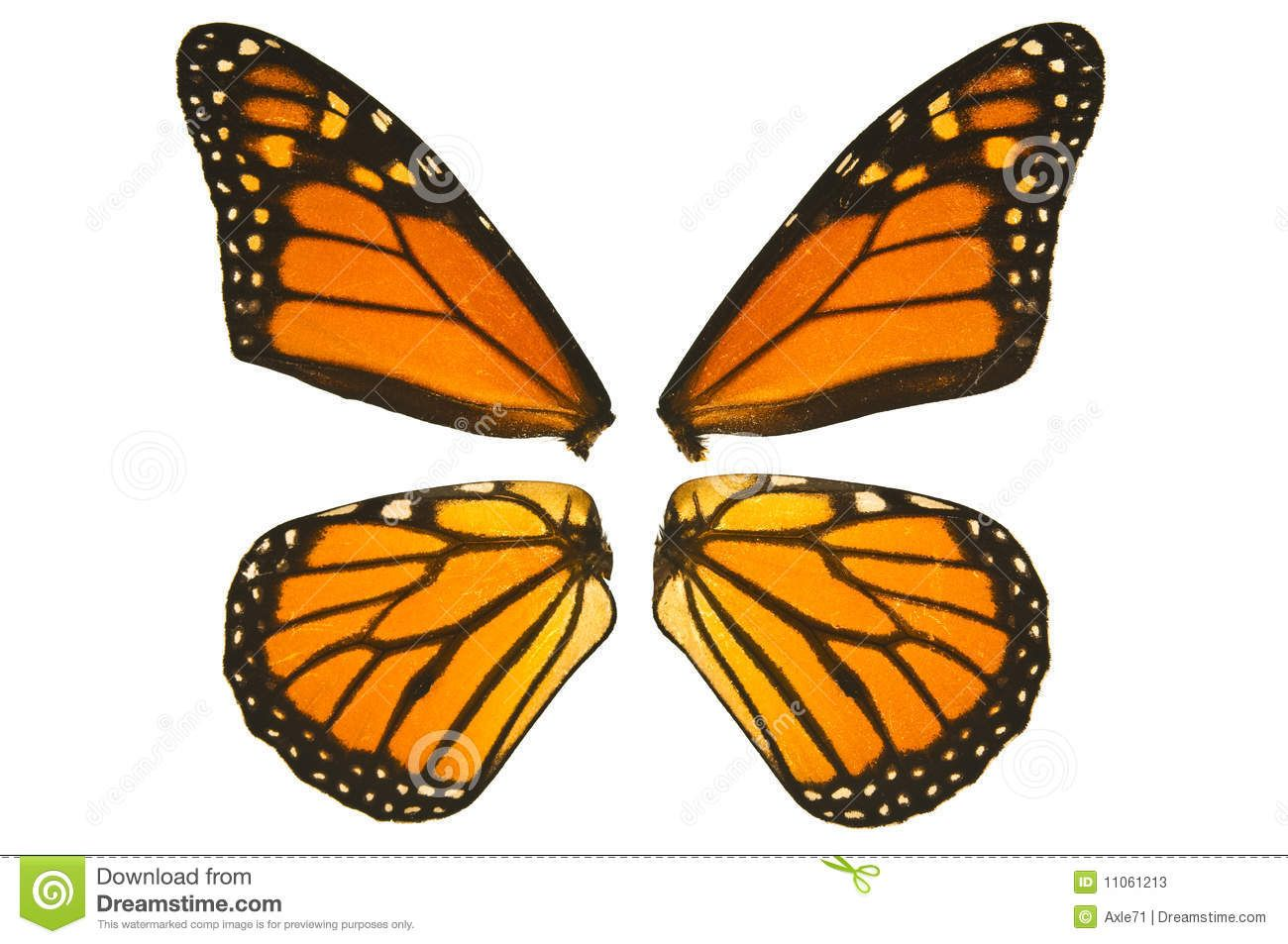 attaching butterfly wings - Google Search | Costume ...