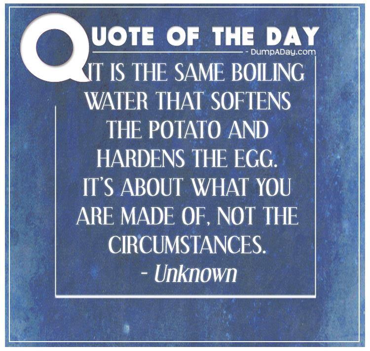 lærerige citater Top Ten Quotes Of The Day   4inspiration   Pinterest lærerige citater