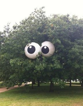 Decorating With Beach Balls Decorate Beach Ball As Eyes  Put On The Tree For Halloween