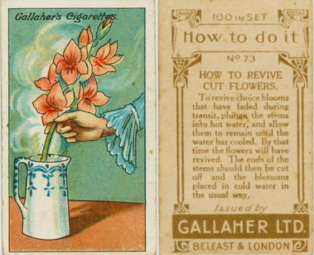 These16 Tricks Are Ancient, But What Ingenious Ideas People Had Back Then Wow