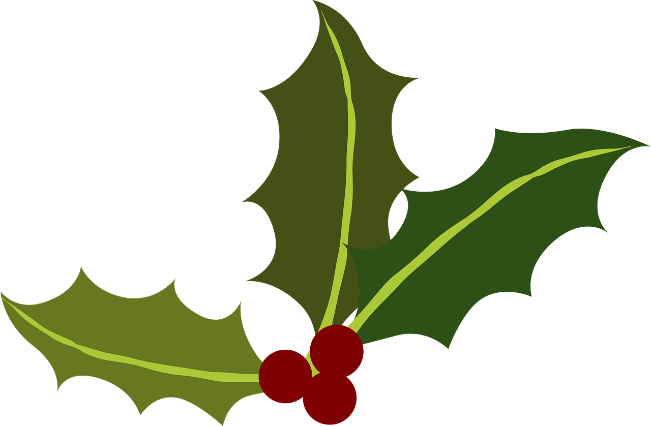 Green Holly Berries Christmas Transparent Image Holly Berries Holly Leaf Holiday Clipart