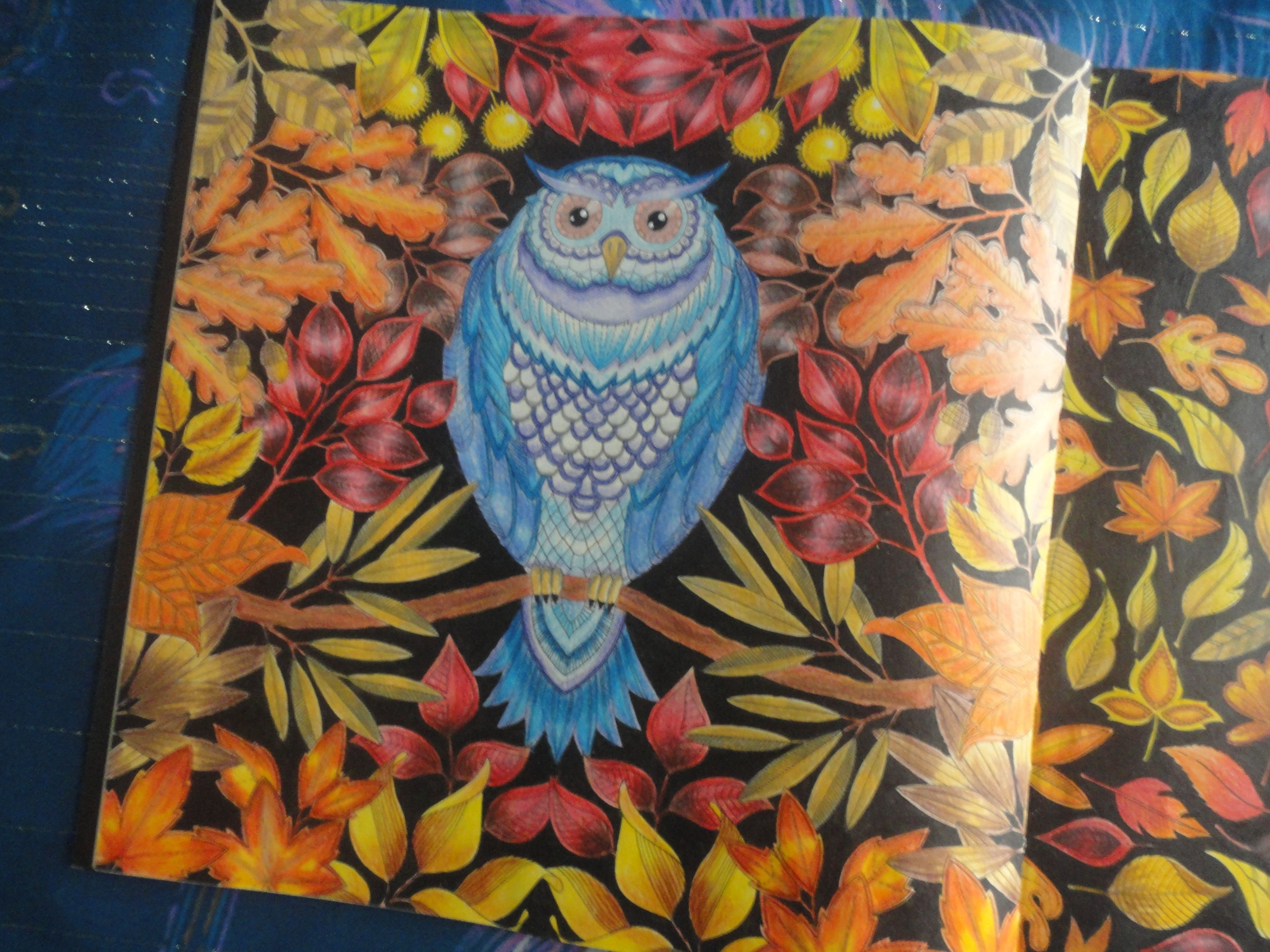 Resultado de imagem para livro jardim secreto pinturas | Jardim ...
