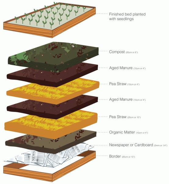 Box Soil Vegetable Garden Raised Beds Elevated Garden Beds