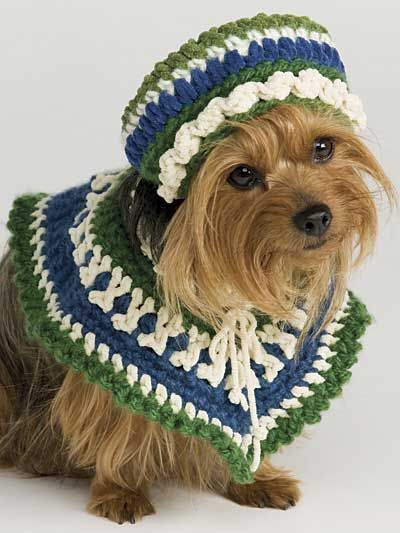 Her Poncho & Hat- Miss Daisy needs these!   Crochet - Dog ...