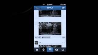 #Cine mudo a través de #instagram Toronto Silent Film Festival Instagram    #btl