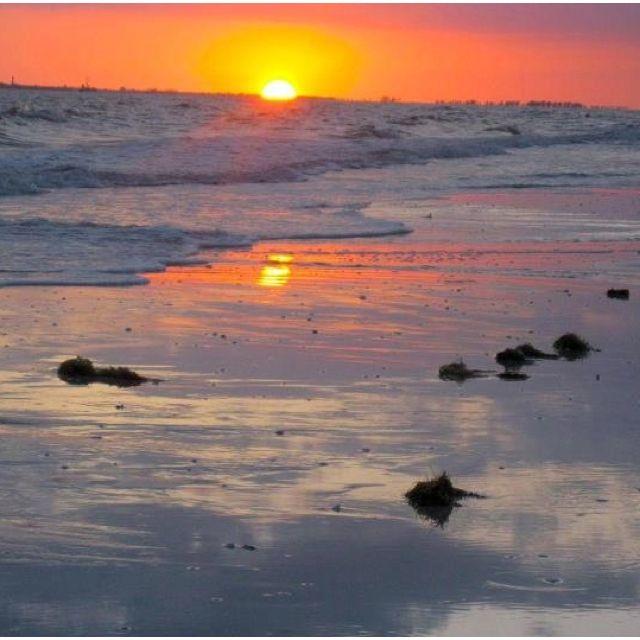 Sunset Carolina.