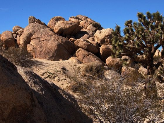 Photo: Out West #2 – Joshua Tree and Boulders at the Antelope Valley Indian Museum #photography #desert #california http://welchwrite.com/blog/2015/06/13/photo-out-west-2-joshua-tree-and-boulders-at-the-antelope-valley-indian-museum/#sthash.S45Xej26.dpuf