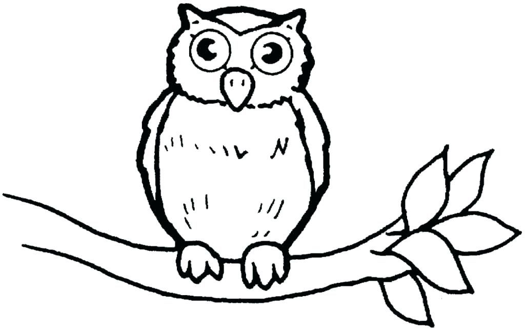 Owl Coloring Pages Pdf Download Free Coloring Sheets Owl Coloring Pages Owl Pictures To Color Owl Drawing Simple