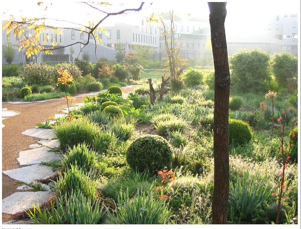 Ens Lyon Communication Garden Gilles Clement Landscape