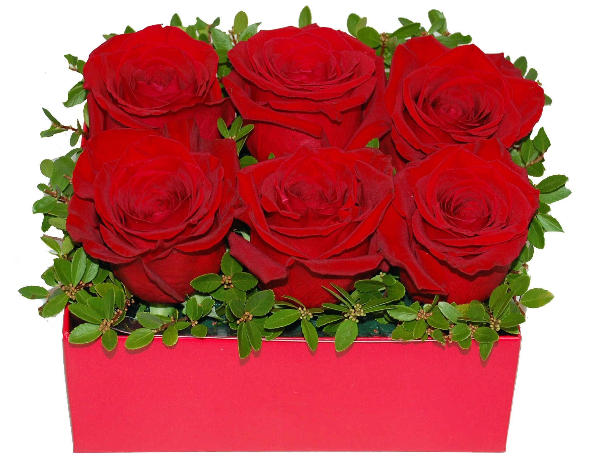 Red Roses Arranged In A Gift Box For The Modern Valentine Available Year Round In Different Colour Choices At Toronto F Fast Flowers Flower Delivery Red Roses