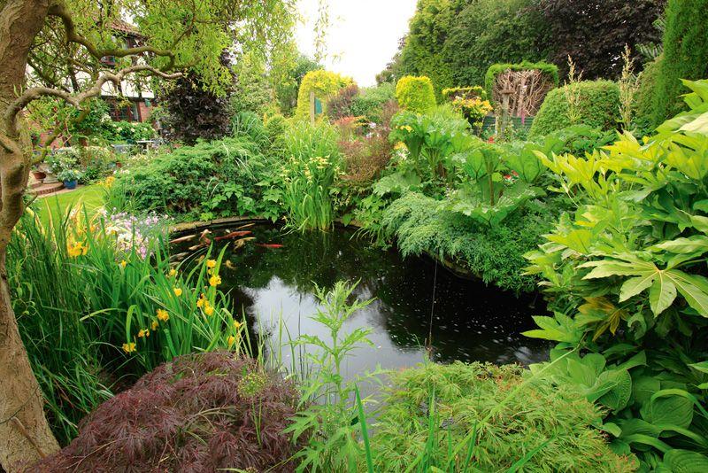 Hidden Garden to visit | Tudor Roost Garden | Garden to Visit - liveforgardening