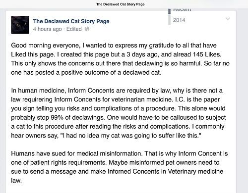 Declawing is a MAJOR surgery, why isnu0027t there a CONSENT FORM - consent form