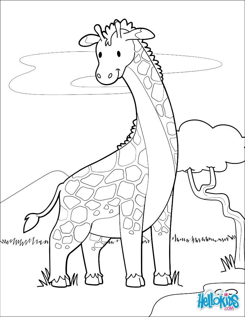 Coloriage D Une Girafe Mignonne A Imprimer Gratuitement Ou Colorier