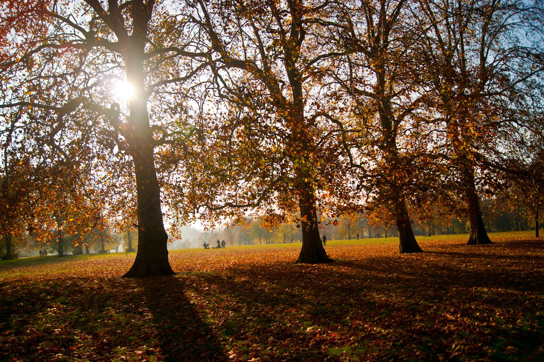 Autumn still makes London Beautiful