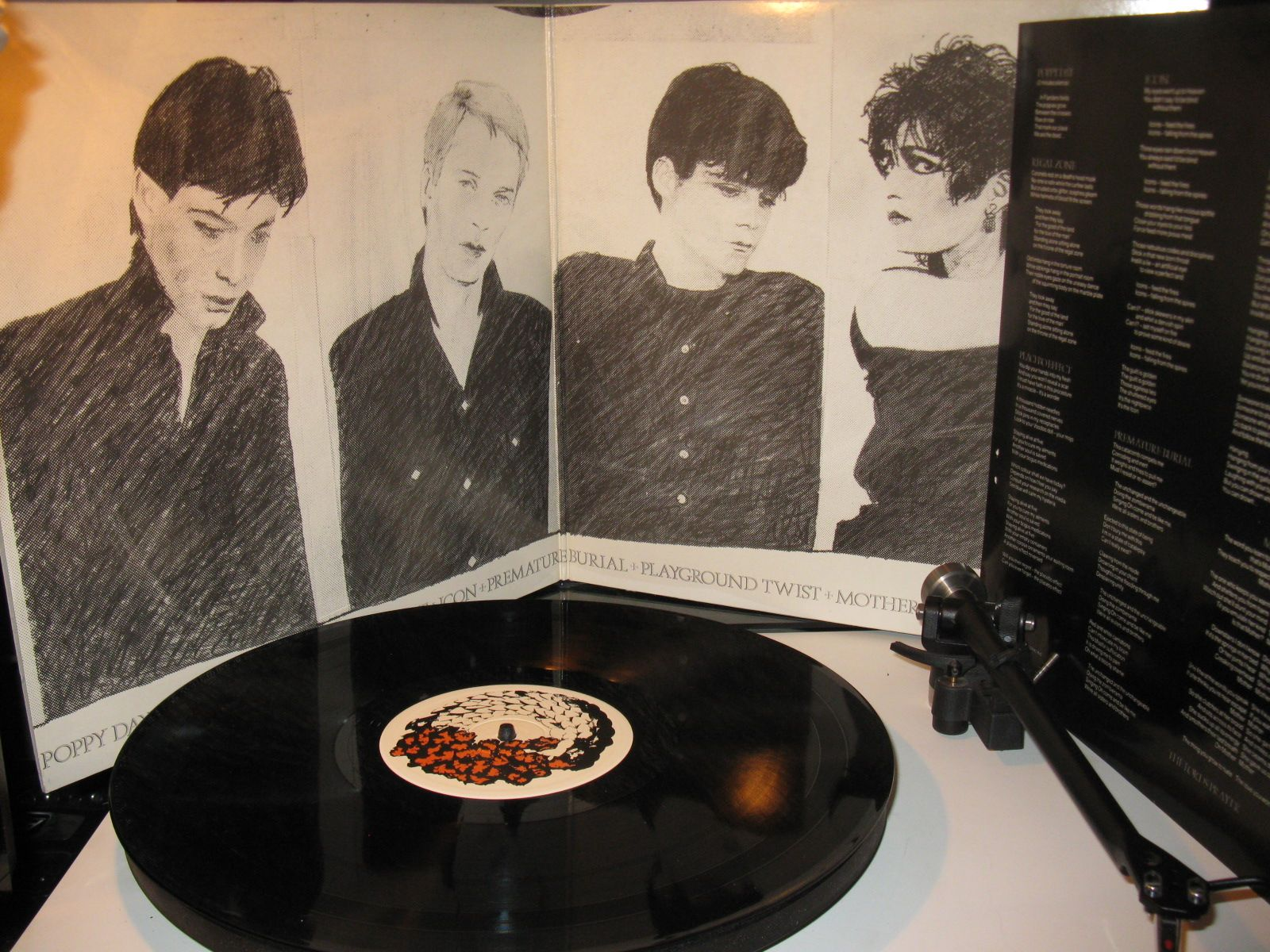 Siouxsie and the banshees Join Hands UK album
