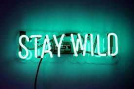 Image Result For Teal Green Aesthetic Green Aesthetic Neon Signs Aesthetic Colors