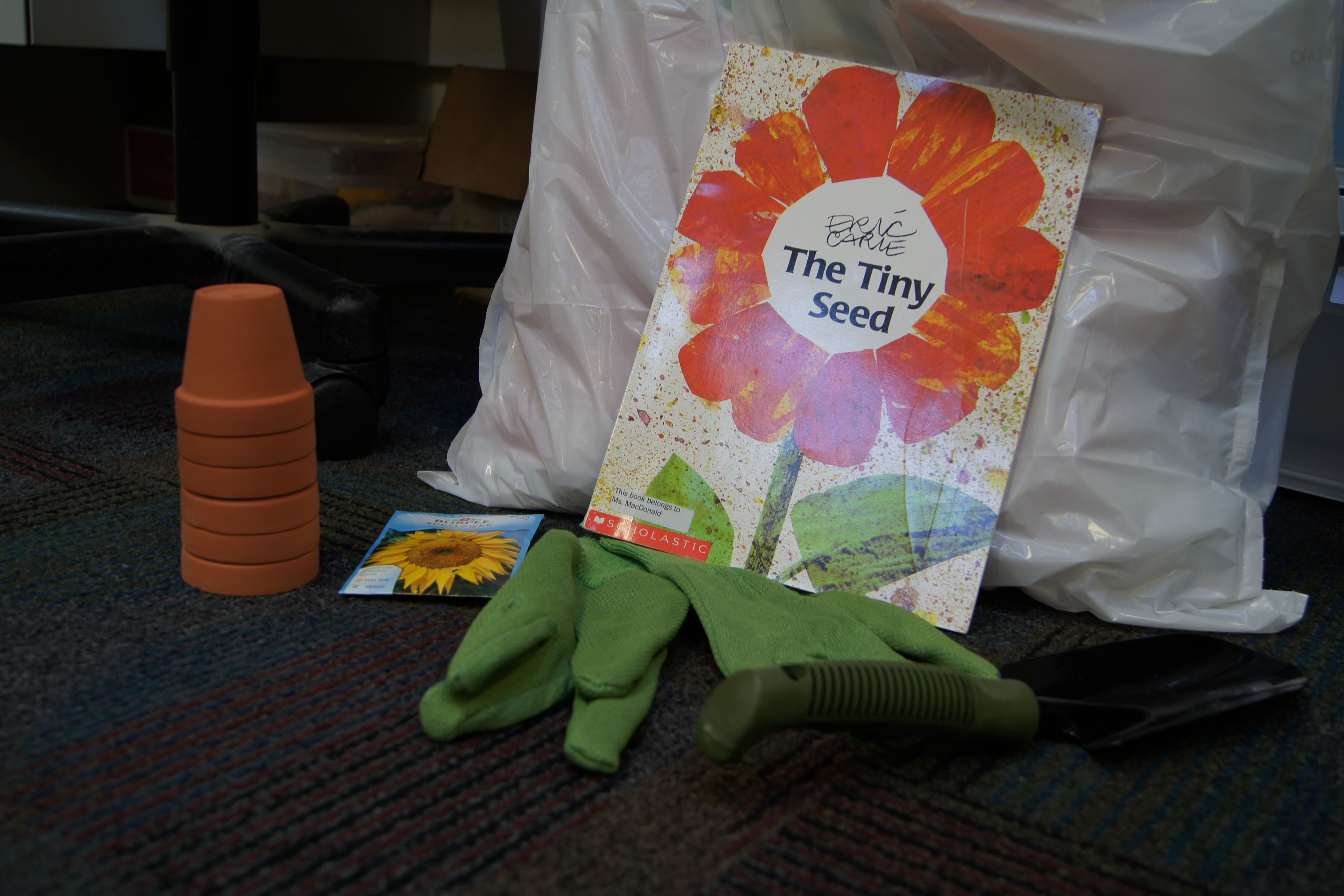 Eric Carle Author Study With Preschoolers From