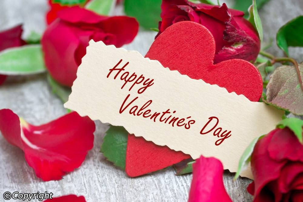 Valentine Day In Germany Date Google Search Google Valentine Happy Valentine Valentine