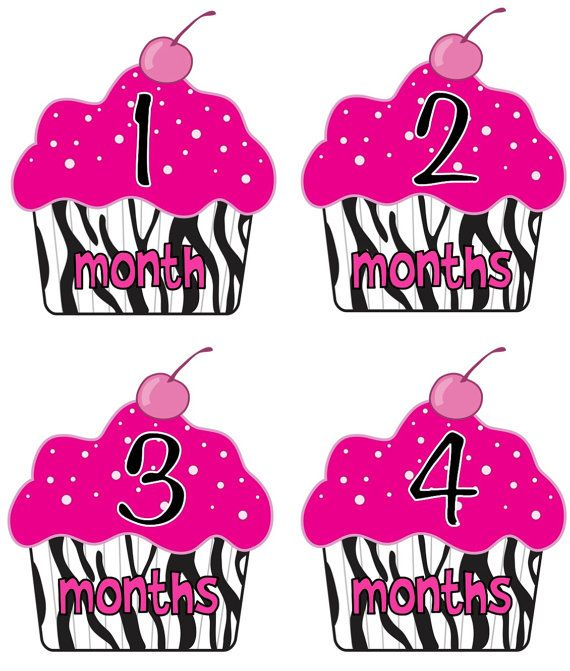 baby month stickers baby girl monthly onesie by getthepartystarted