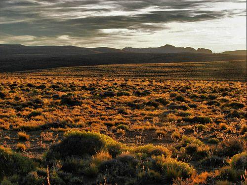 Pin de Agustina V. en Wanderlust | Argentina paisajes, Pampa argentina, Destinos turisticos argentina