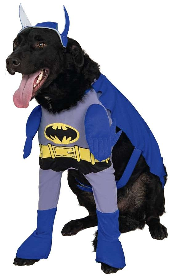 Batman Brave Bold Batman Dog Costume Includes Shirt Cape And