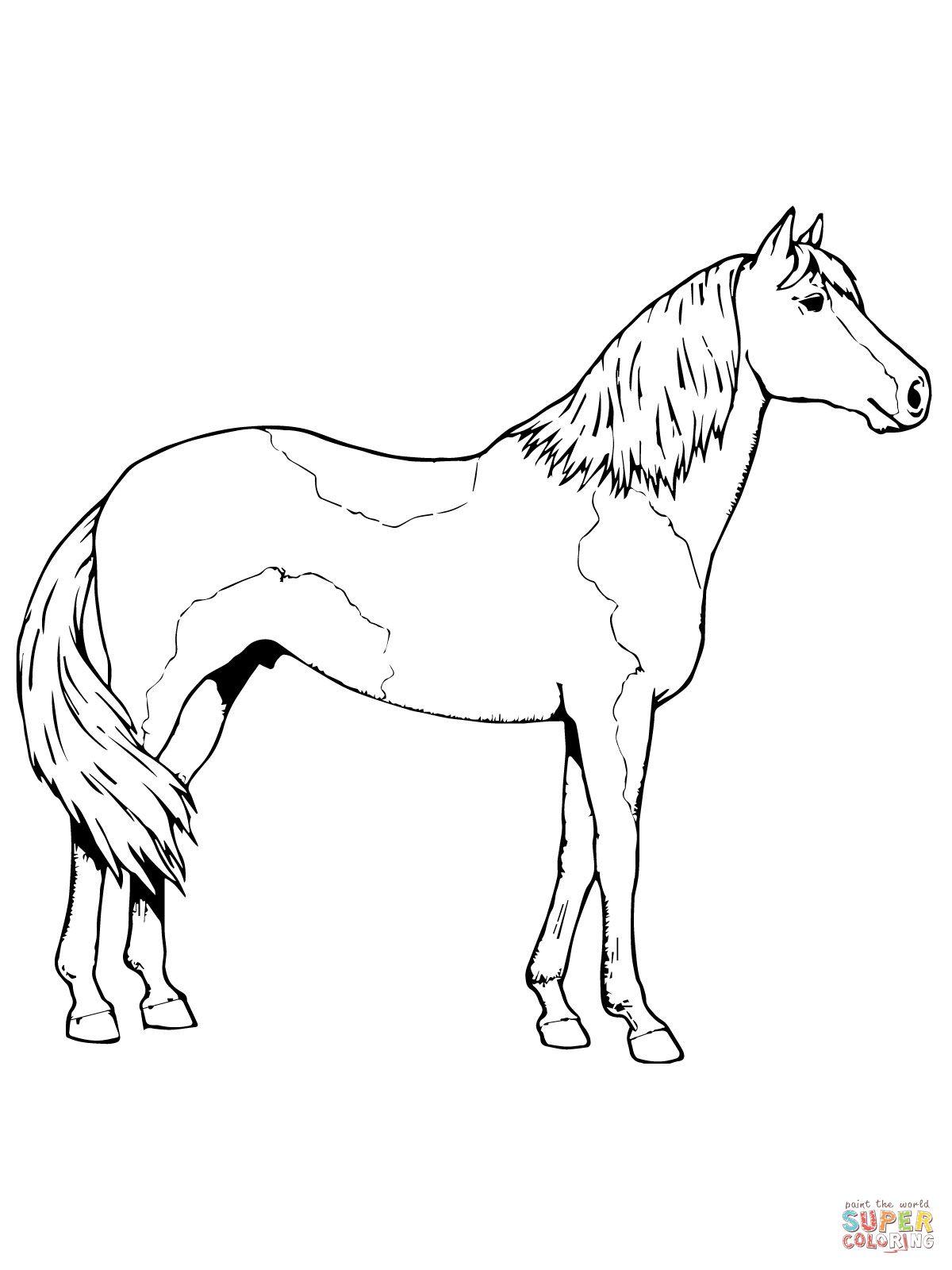 65 supercoloring pferde  malvorlagen für kinder zum