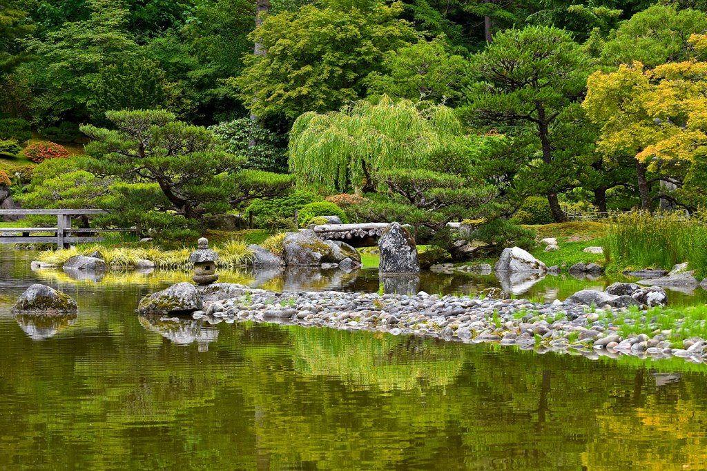 Japanese garden at Washington park arboretum Seattle