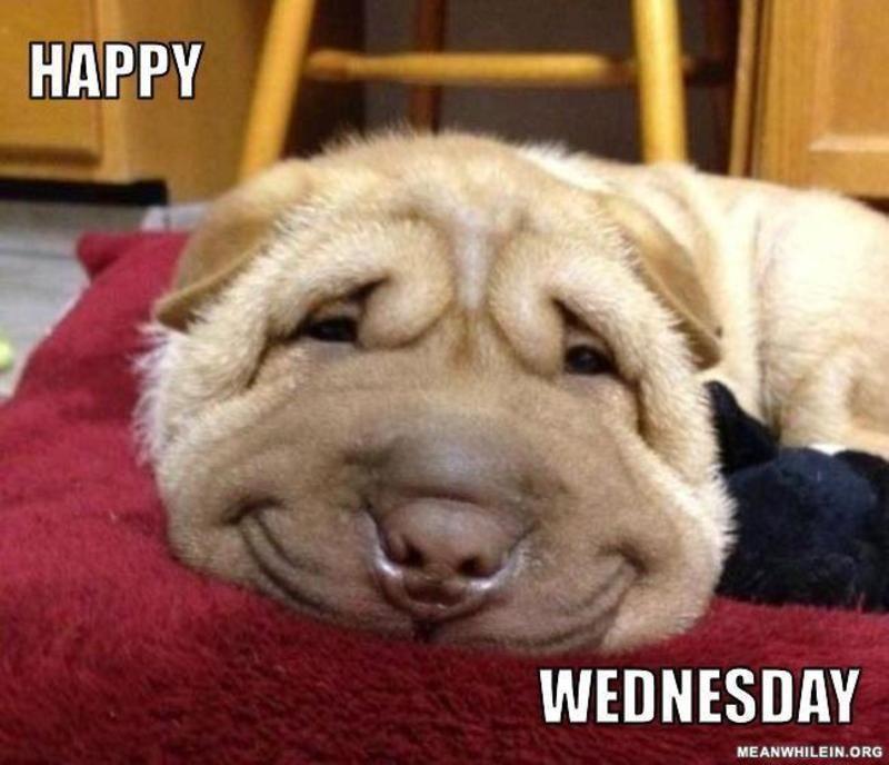 Happy Wednesday wednesday wednesday quotes happy wednesday ...