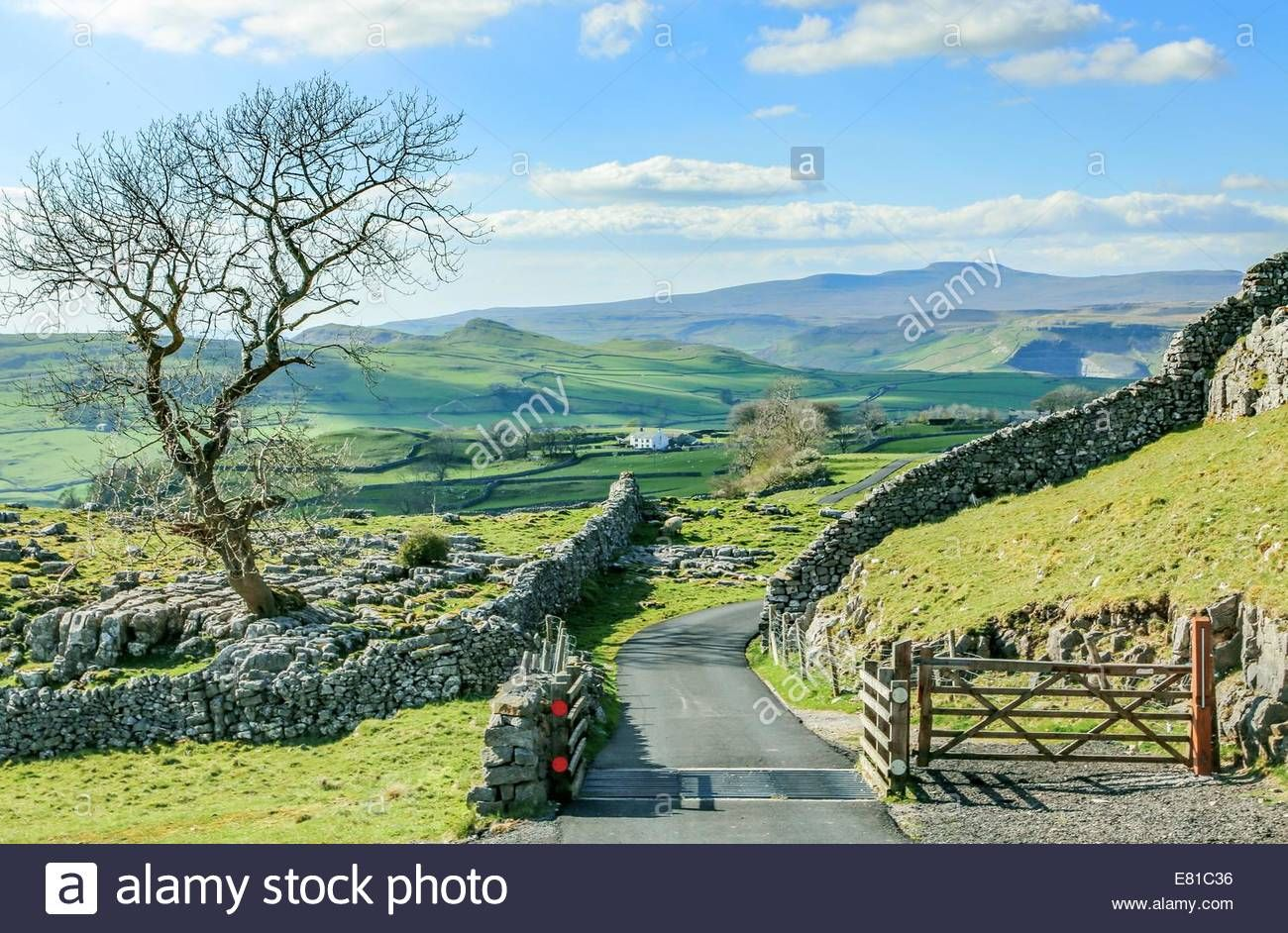Download This Stock Image Beautiful Yorkshire Dales Landscape Stunning Scenery England Tourism Uk Green Rolling Hills In 2020 England Tourism Yorkshire Dales Scenery