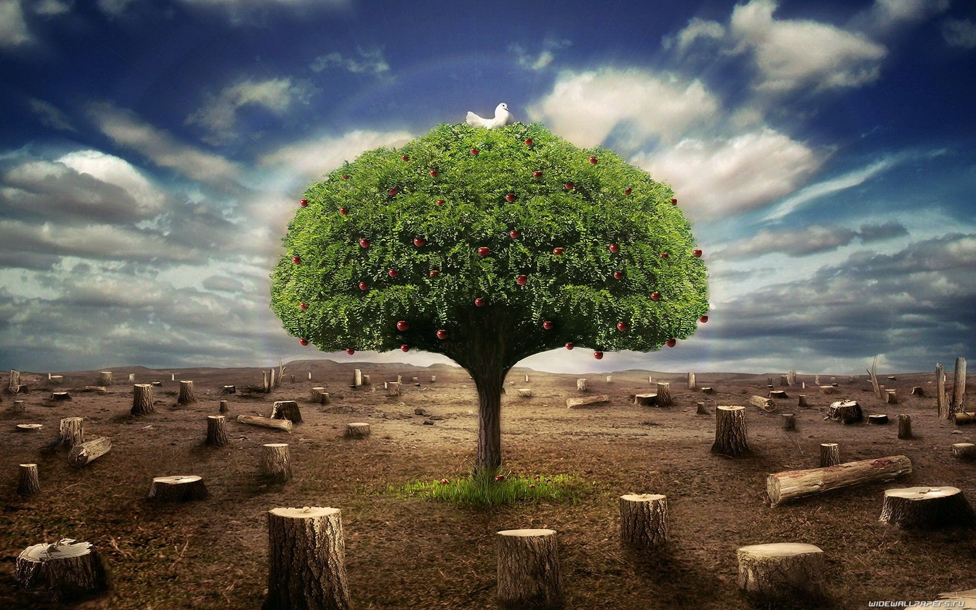 Image result for the last tree