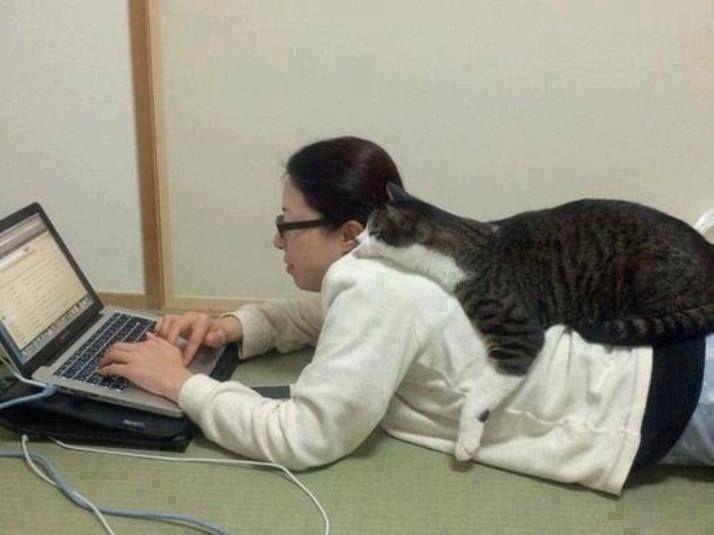 Internettraining
