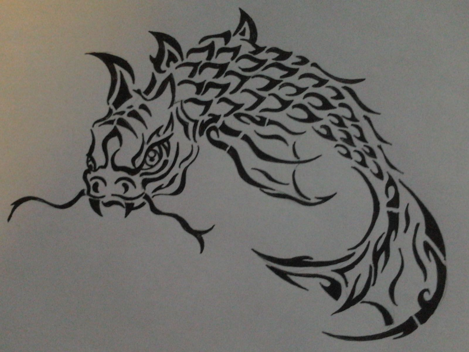 Dragon Koi Fish Tribal Dragon Koi Fish Drawing Koi Fish