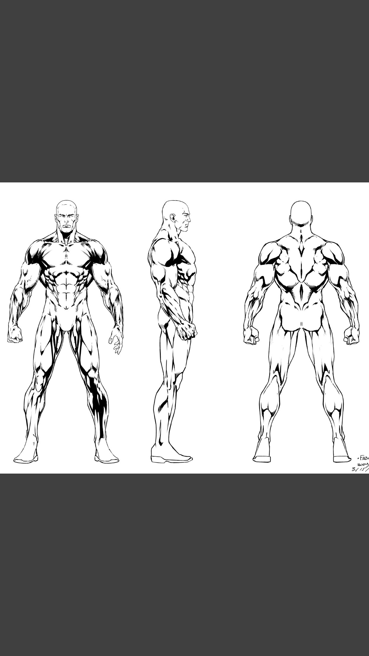 Pin By Belzkiel On Sketch Pinterest Anatomy Art Reference And