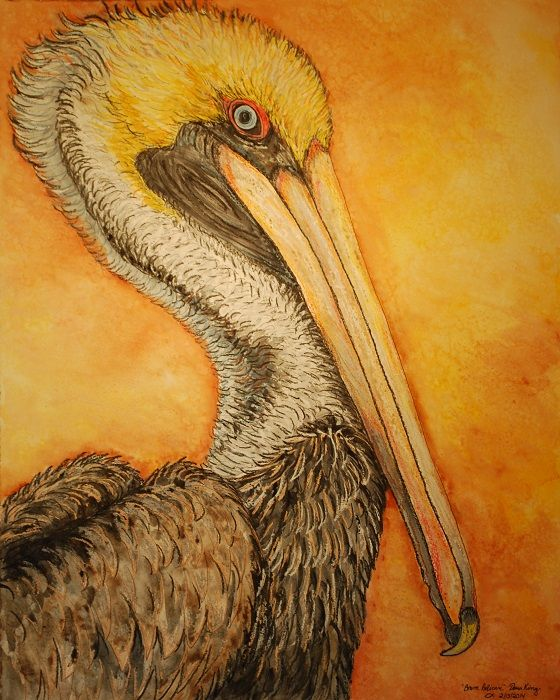Pelicans Eye View Of Topsail Island From The Surf City: #Brown Pelican #Dana King Art #Topsail Island Art #Mixed