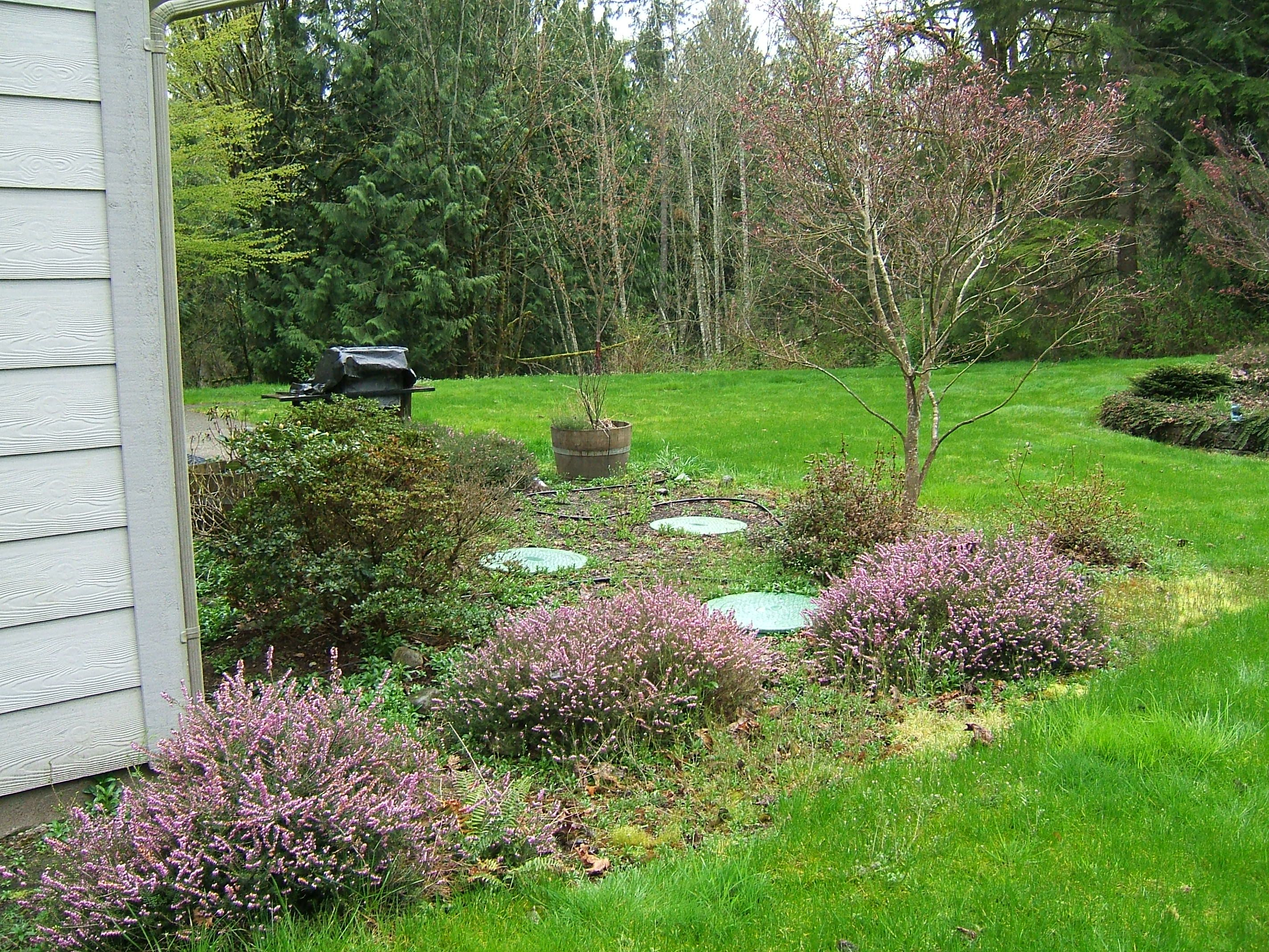 garden ideas to hide septic tank design decorating 513076