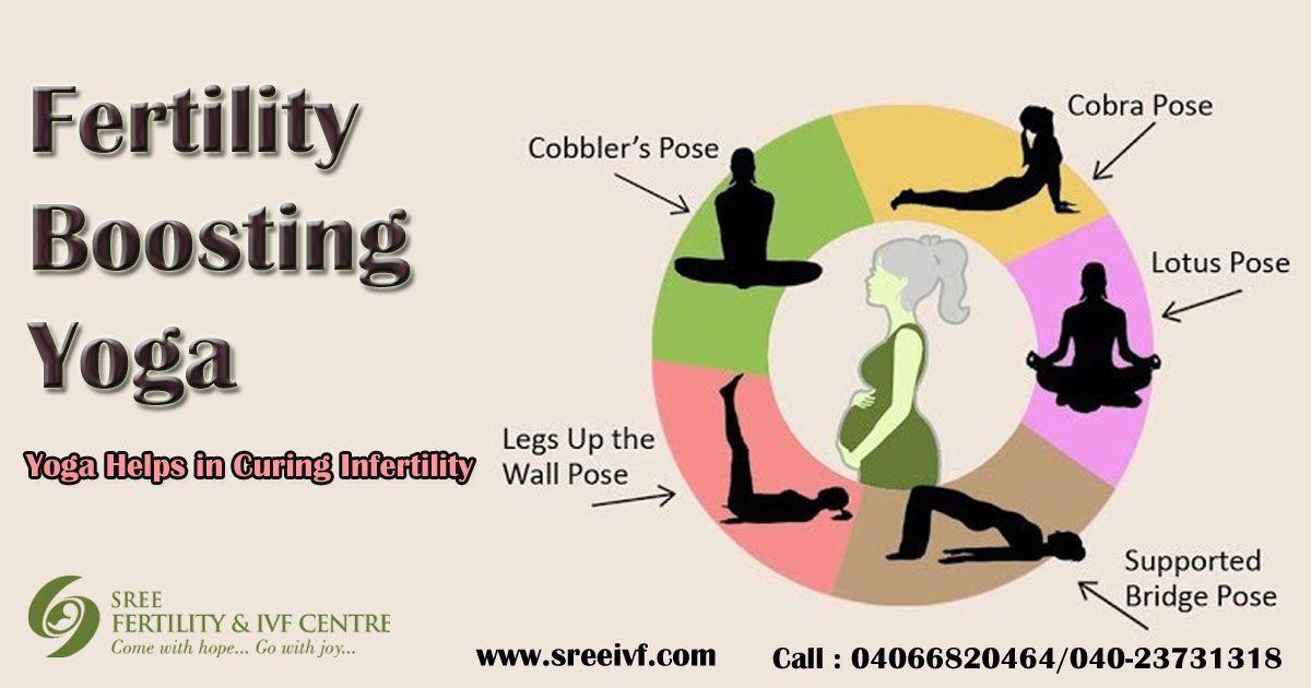 Pin by Sree Fertilty on Fertility Treatment Specialist ...