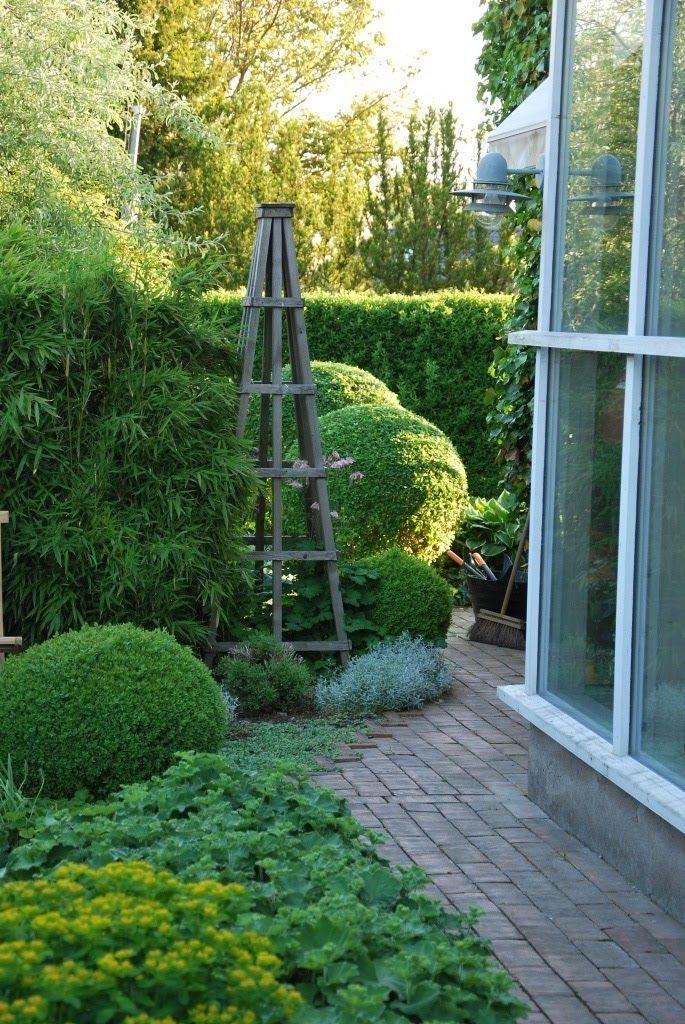 Katarina's garden
