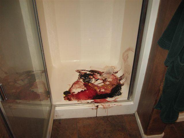 Image result for travis alexander crime scene