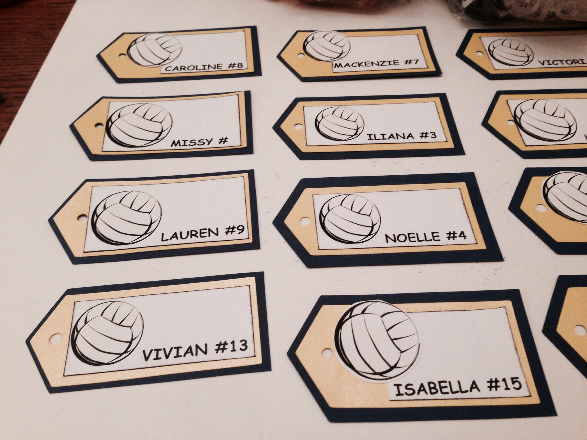 Volleyball Tags Made With Computer And Cricket Cutter Cricket Crafts Volleyball Cricut Crafts