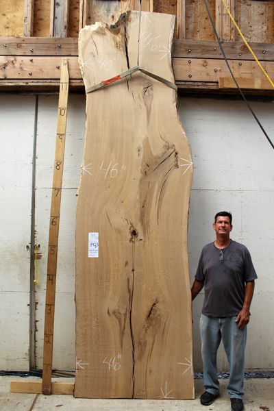 Oak Red Inventory Item 3923x1