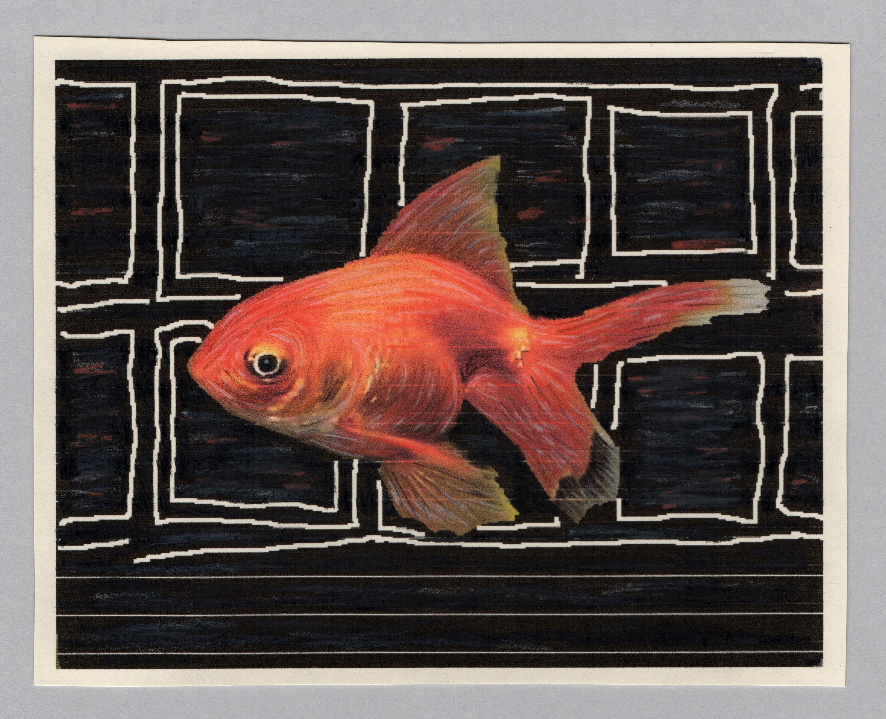 Goldfish in the CIty - Original Photos, Computer Drawing, Colored ...